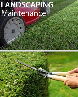 Lanscape maintenance